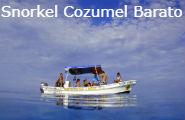 Snorkel Cozumel Barato
